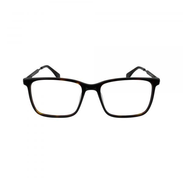 Q319 Tortoise Glasses - Front View