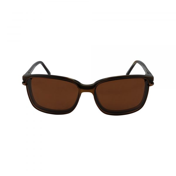 Brockton Brown Glasses - Sunglasses