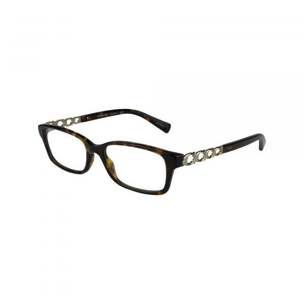 6148 Tortoise Glasses - Side View