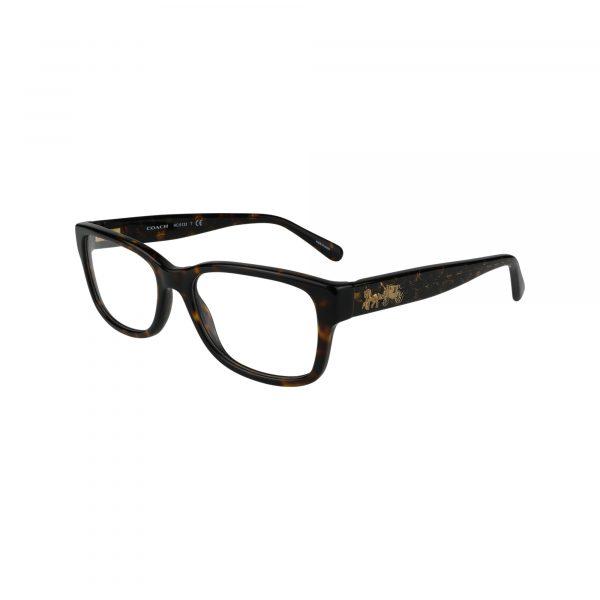 6133 Tortoise Glasses - Side View