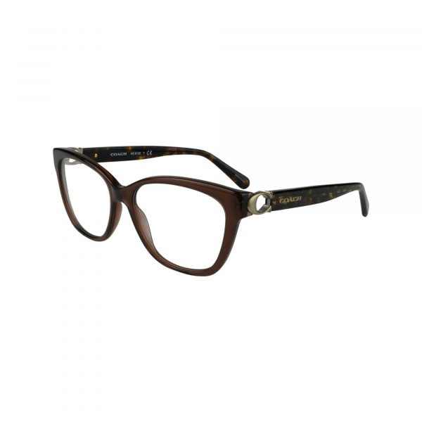 6120 Brown Glasses - Side View
