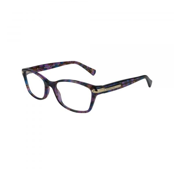 6065 Purple Glasses - Side View