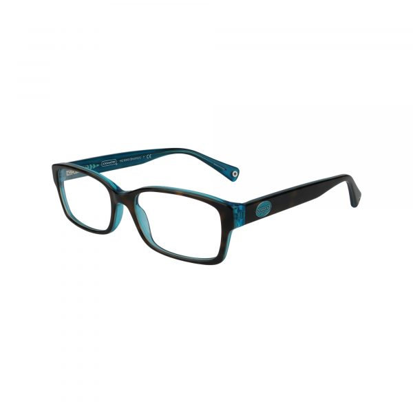 6040 Tortoise Glasses - Side View