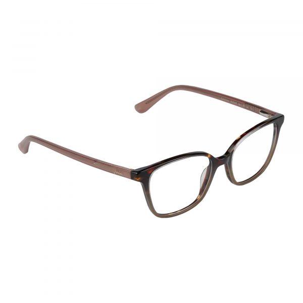 Joules Brown Tortoise JO3049 - Eyeglasses - Right