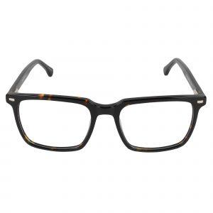 Fregossi Brown 1002 - Eyeglasses - Front
